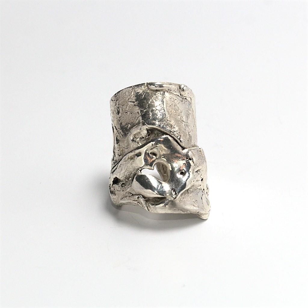 silverring_dorakapousouzi